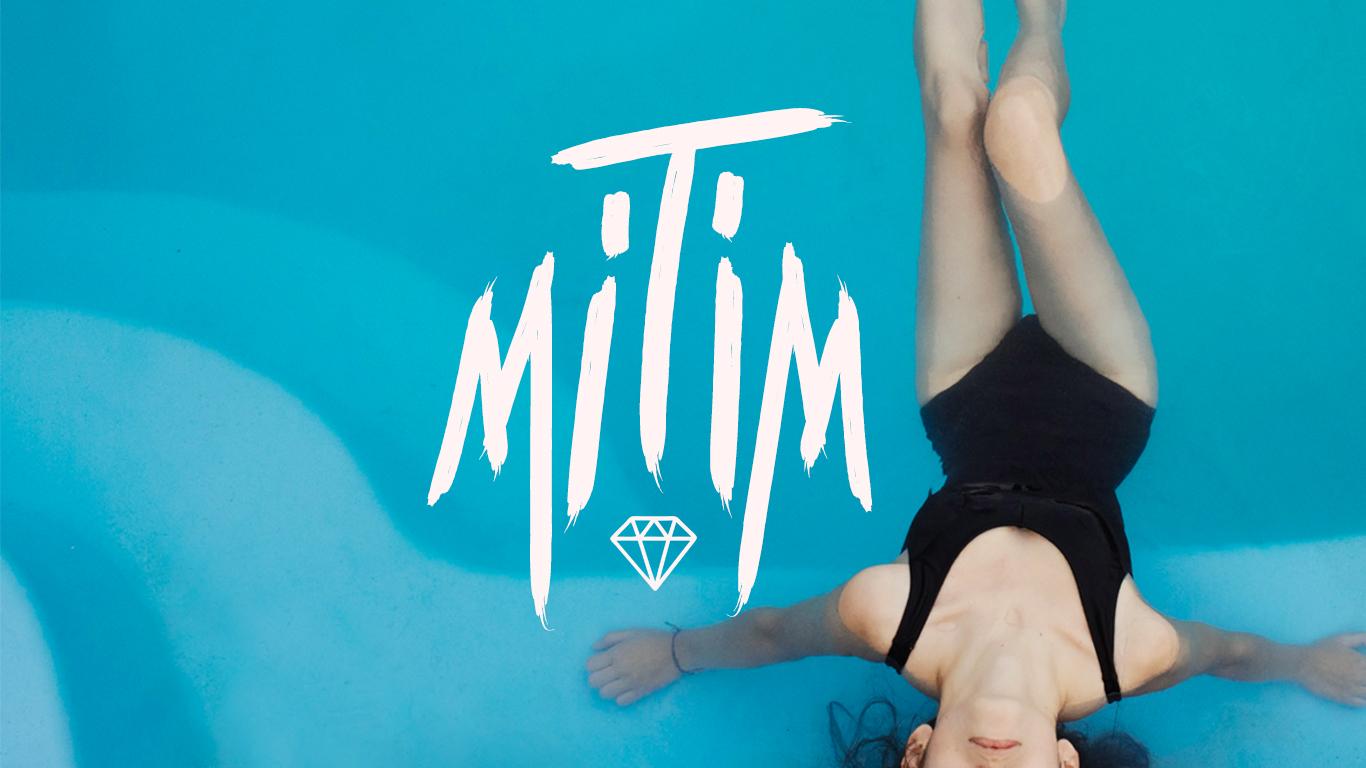 header_mitim